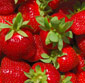 Picture of Organic Strawberries
